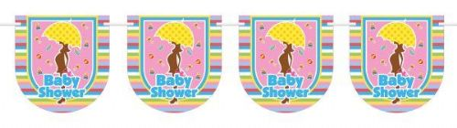 Bunting Baby Shower 6m